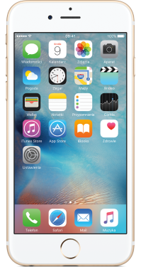 Apple iPhone 6s 128 GB OUTLET